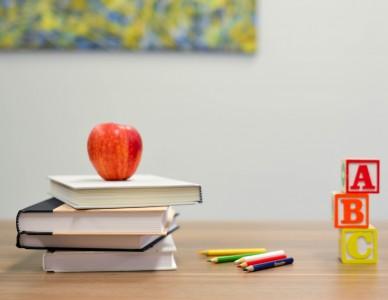Educação a distância: seis dicas para as crianças estudando em casa